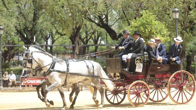 Uno de los carruajes, en un momento de sol, durante la prueba de Manejabilidad en el Prado de San Sebastián.