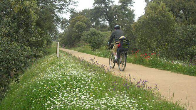 Ciclista en la Vía Verde de la Sierra Norte de Sevilla.