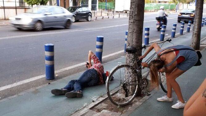 Un ciclista se choca contra un árbol en la Cartuja