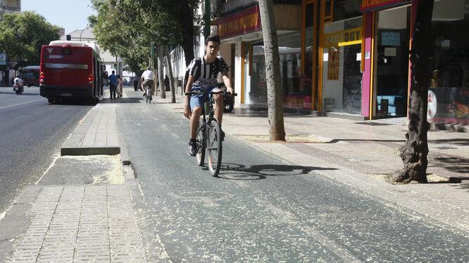 El carril bici de la ronda histórica será más ancho y seguro del Prado a Resolana