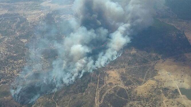 Imagen aérea de la zona afectada por el incendio.