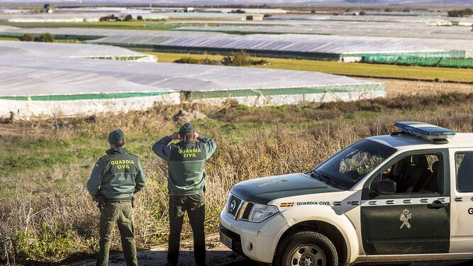 Dos guardias civiles vigilan una explotación agrícola.