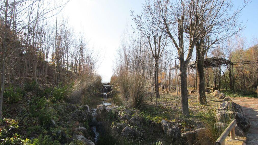 Un paseo por el jard n micol gico la trufa for Jardin micologico la trufa