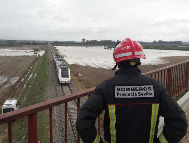 d5dd425448 http   www.diariodesevilla.es mundo Muere-geologo-accidente-Metro ...