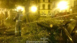 Las imágenes del paso de la borrasca 'Ana' por Sevilla