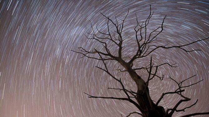 Los días 13 y 14 de diciembre se verán las últimas lluvias de estrellas del año.