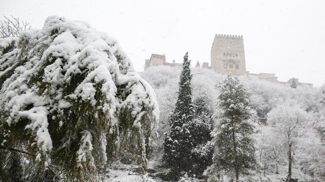 La Alhambra y sus alrededores, cubierta de un manto blanco.