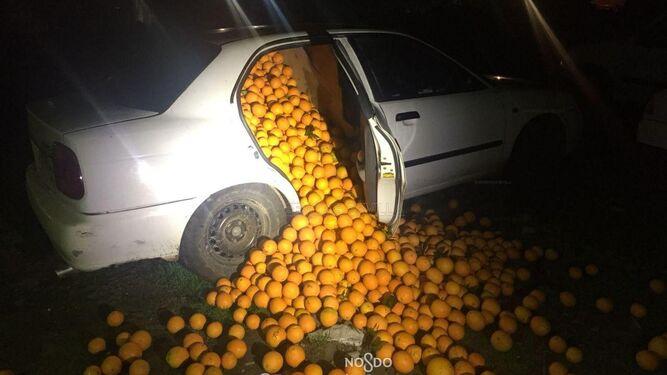 Las naranjas cargadas en un coche