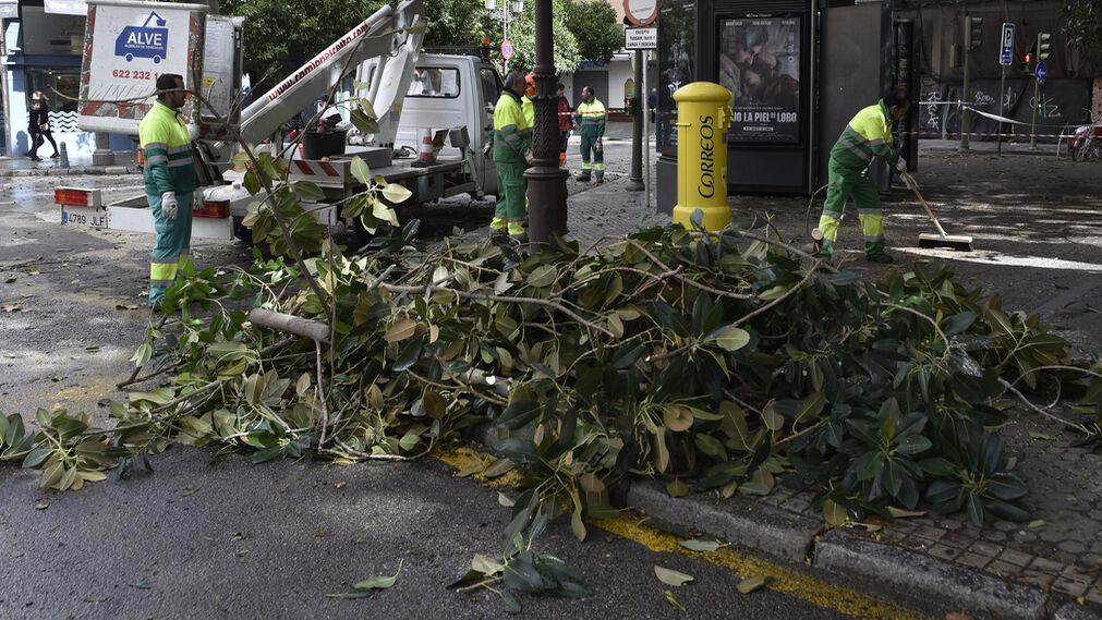 Las imágenes del temporal en Sevilla