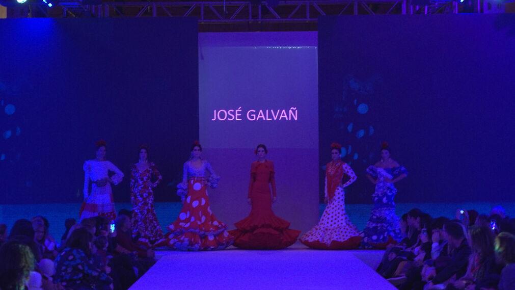 Doñana D´flamenca- José Galván