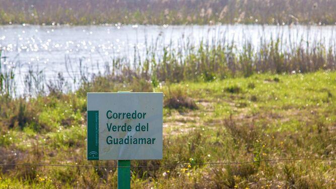 Otra imagen del estado actual del Guadiamar.