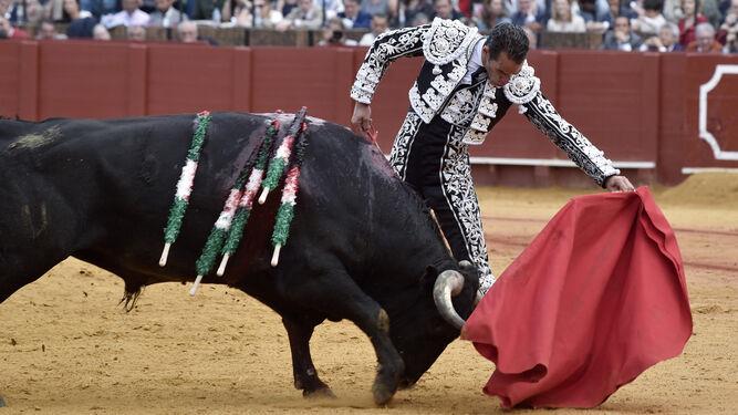 Pepe Moral está en el cartel de los toros en Sevilla que cierra el ciclo de la Feria de Abril