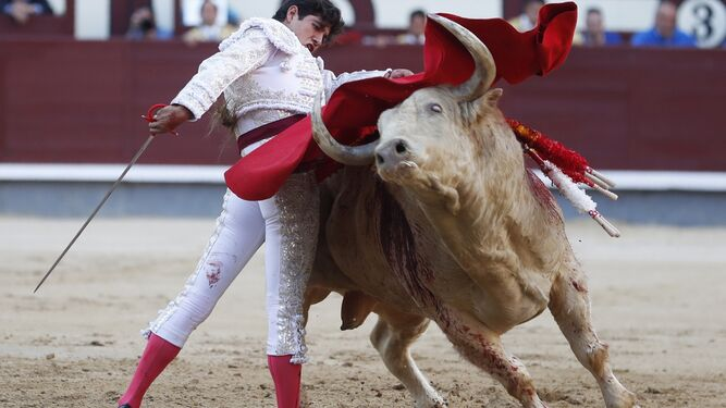 Finito de Córdoba, en una verónica al toro que abrió plaza, primero de su lote.