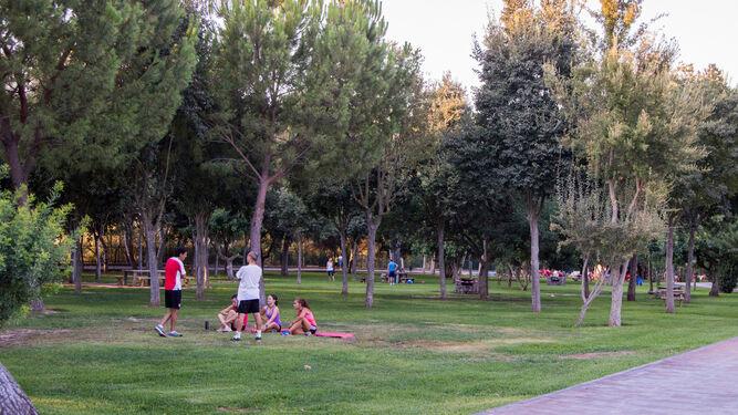bbb3dc80e El Parque El Majuelo, de La Rinconada, ha sido puesto a punto con una  importante reforma.