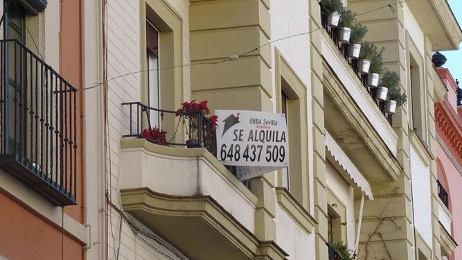 Buscar piso en sevilla la pesadilla de muchos estudiantes for Alquiler de pisos en el centro de sevilla capital