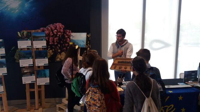 Las visitas escolares a la exposición itinerante es una de las actividades de la Semana de la Ciencia en el Acuario de Sevilla