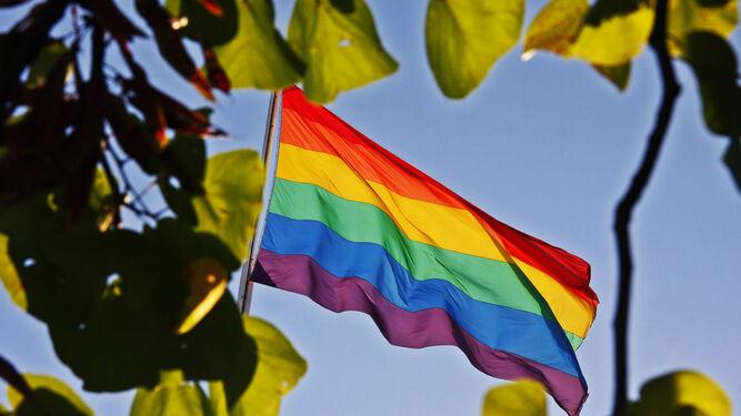 orgullo gay sevilla 2020 actuaciones
