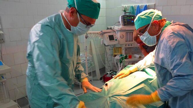 Un cirujano taurino, en los momentos previos a una intervención quirúrgica.