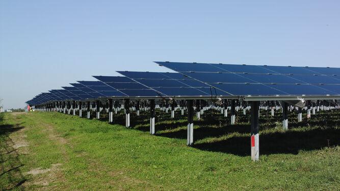 Las solicitudes de huertos solares se incrementan en un 74% en un año
