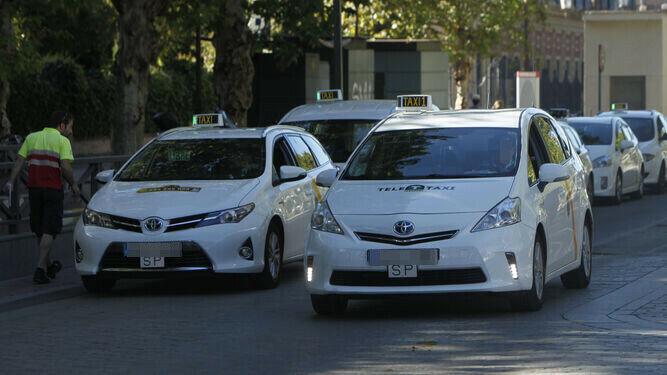 Varios taxis esperando en una parada.