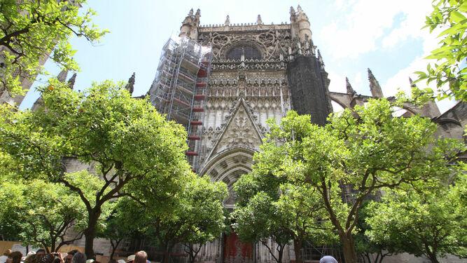 Sevilla no plantará nuevos naranjos para frenar su número excesivo