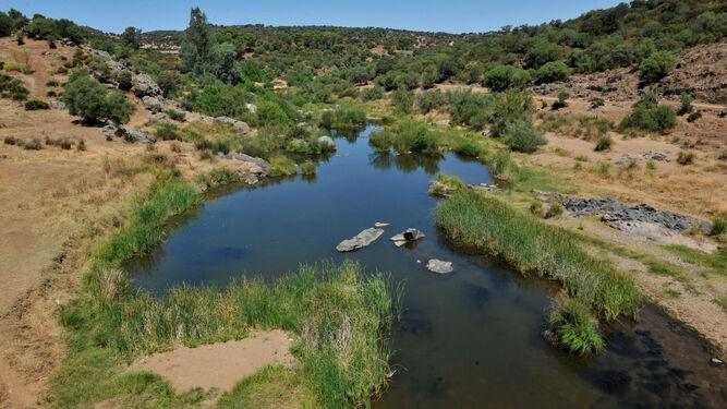Cuatro comarcas de la provincia de Sevilla sufren ya sequía severa