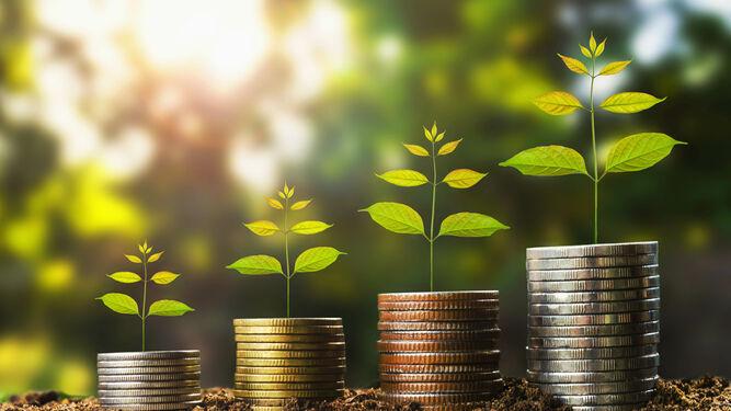 Banca Responsable: Las finanzas también combaten el cambio climático