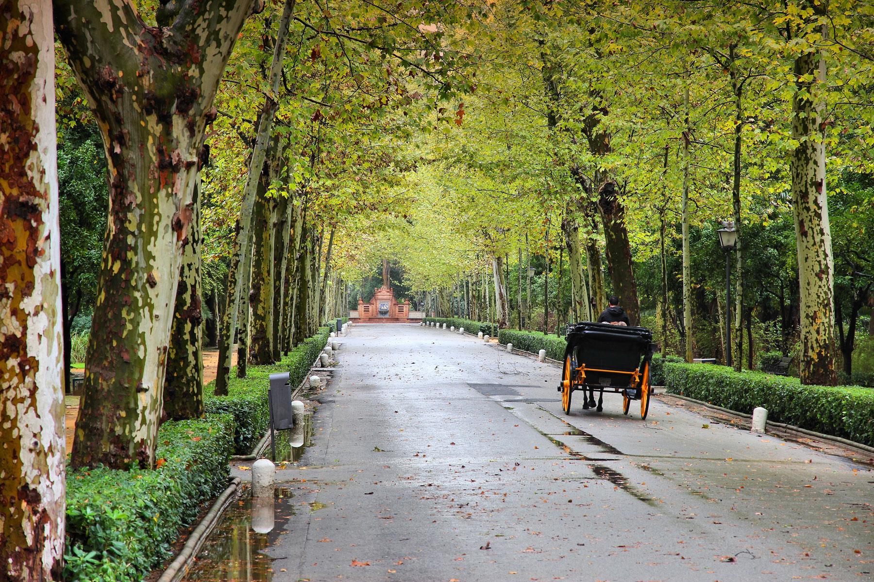 Los 20 Lugares Imprescindibles Para Visitar En Sevilla